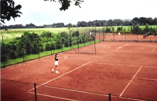 Tennisanlage Sommer 88